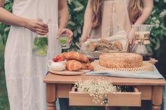 Flickor har blivit en picknick arkivfoto