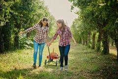 Flickor med Apple i den Apple fruktträdgården Arkivfoton
