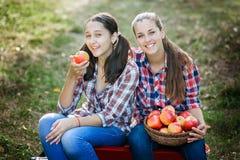 Flickor med Apple i den Apple fruktträdgården Arkivbilder