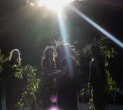 Flickor med en krans av vildblommor royaltyfria foton
