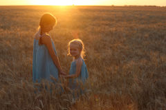 Flickor på ett vetefält Arkivbild
