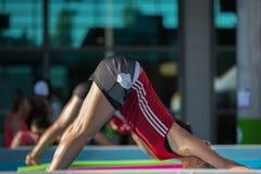 Flickor som gör övningar på att sväva kondition som är matt i en utomhus- simbassäng Arkivbild