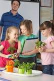 Flickor som lärer om växter i skolagrupp Arkivfoton