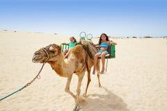Flickor som rider kamlet i kanariefågelöar Arkivbilder