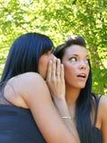 flickor som skvallrar två Royaltyfri Bild