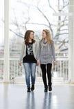 flickor två som går Royaltyfria Bilder