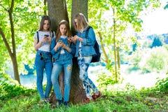 Flickvän för tre flickor I sommar parkera efter skola I händer av hållande smartphones Att att motsvara i sociala nätverk royaltyfria foton