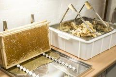 Fließen süße Honigtropfenfänger des glatten gelben goldenen Honigkammes während des Erntehintergrundes mit textspace Lizenzfreie Stockfotos