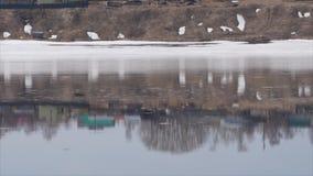 Fließen und Spritzwasser im kalten Fluss stock video footage