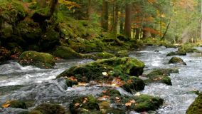 Fließendes Wasser stock footage