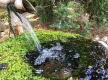Fließendes Wasser Stockfotos