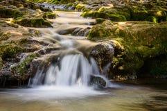 Fließendes Wasser! Frühling willkommen Stockfotografie