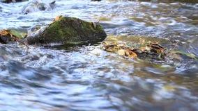 Fließendes Wasser mit Steinen und Laubabschluß oben stock video footage