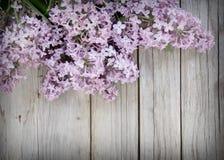 Flieder auf verwittertem Holz Lizenzfreies Stockbild