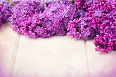 Flieder blüht Blumenstrauß lizenzfreie stockfotos