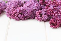 Flieder blüht Blumenstrauß Lizenzfreie Stockbilder