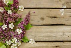 Fliedern und Kirschblüte auf altem Holztisch Stockbild
