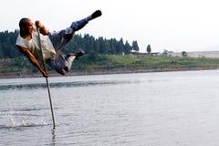 Fliege auf Wasser. Stockfotos