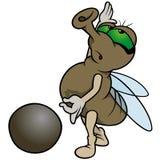 Fliege, die Marmore spielt Lizenzfreies Stockbild