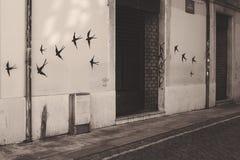 Fliege geben frei Lizenzfreies Stockfoto