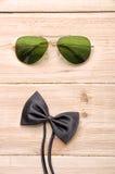 Fliege mit Sonnenbrille Lizenzfreie Stockbilder