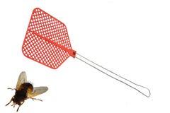 Fliege und Fliegenklatsche Lizenzfreie Stockfotografie