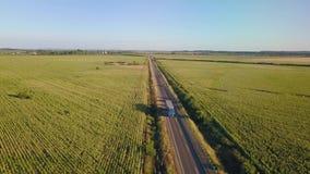 Fliegen über das Feld von grünen Erbsen Luftvermessung stock footage