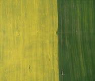 Fliegen über das Rapssamenfeld mit Brummen Landsacape Traktor befruchten Weizenfeld Lizenzfreies Stockbild