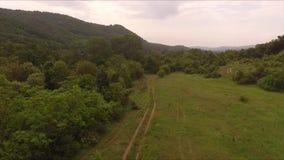 Fliegen über den Bergen, Schotterweggrenze zwischen Holz und Wiesen stock video