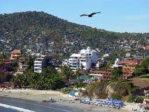 Fliegen über den Strand Stockfoto