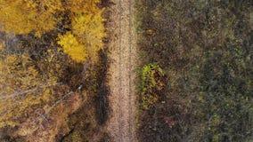 Fliegen über der Eisenbahn, die durch den Waldherbst überschreitet Schattenbild des kauernden Geschäftsmannes 4K stock video footage