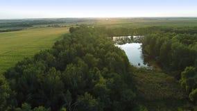 Fliegen über grüne Felder stock footage