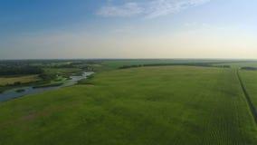 Fliegen über grünes Feld und Fluss stock video footage