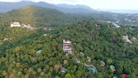 Fliegen über schönen üppigen grünen Dschungel mit Palmen stock footage