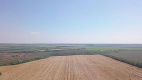 Fliegen über schönes Feld mit Ballen Heu Luftbrummengesamtlänge 4k stock footage
