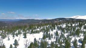 Fliegen über Schneebäume Russland, UralJanuary, Temperatur -33C stock footage