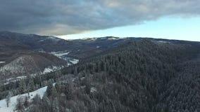 Fliegen über schneebedeckte Hügel und Wald stock video footage