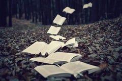 Fliegen-Bücher Lizenzfreie Stockfotos