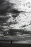 Fliegen eines Drachens Stockbild