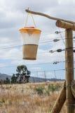 Fliegen-Falle, die an einem Zaun hängt Lizenzfreie Stockfotografie