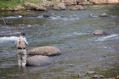 Fliegen-Fischen auf dem Gunnison-Fluss in Colorado stockfotografie