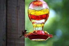 Fliegen-Kolibri lizenzfreie stockfotografie