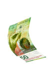 Fliegen-Schweizergeld Stockfotos