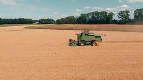 Fliegen Sie über gelbes Weizenfeld und grünen Erntemaschinenmähdrescher am sonnigen Tag Schattenbild des kauernden Geschäftsmanne stock footage
