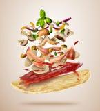 Fliegenbestandteile mit Pizzateig, auf hellem Hintergrund lizenzfreies stockbild