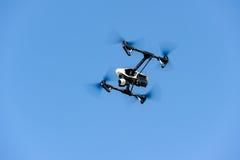 Fliegenbrummen mit Kamera stockfotografie