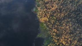Fliegender nebelhafter Morgen über dem Fluss, Draufsicht stock video