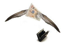 Fliegendes weg britisches Pound Stockfotografie