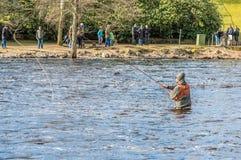 Fliegenfischen im ruhigen Wasser Stockfotos