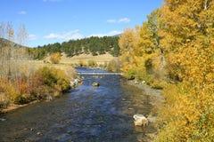 Fliegenfischen Kolorados in den felsigen Bergen Lizenzfreies Stockfoto